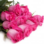 Роза Топаз розовая, 50 см.