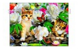 Алмазная мозайка  Котята и бабочки