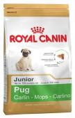 Сухой корм для щенков ROYAL CANIN Pug Junior Мопс, 1.5 кг.